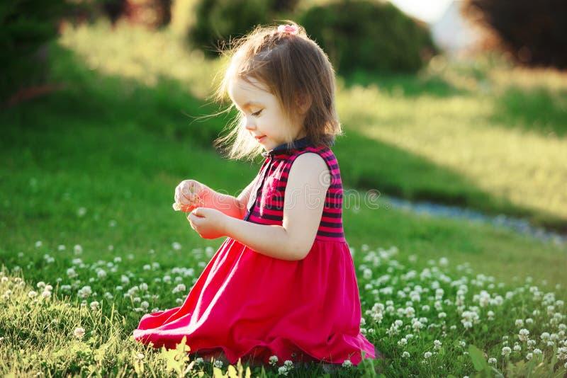 La ragazza sveglia in vestito rosso raccoglie i wildflowers bambino felice di buon umore fotografia stock libera da diritti