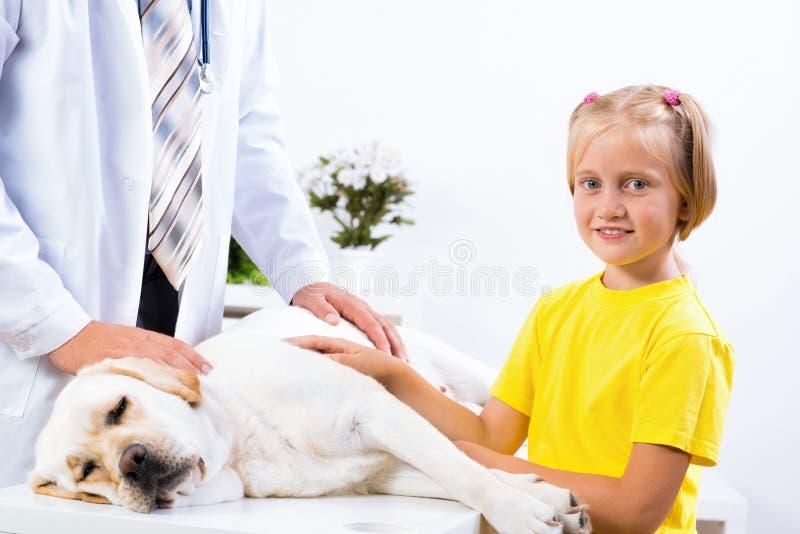 La ragazza tiene un cane in una clinica veterinaria fotografie stock libere da diritti