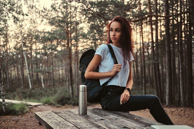 La ragazza turistica sensuale che si siede su una tavola di legno, avendo irrompe una bella foresta di autunno al tramonto fotografia stock libera da diritti