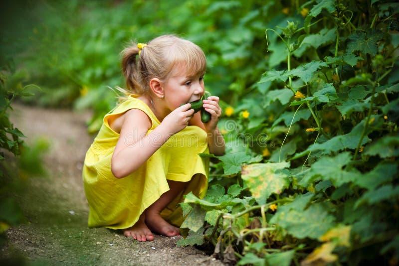 La ragazza in un vestito giallo mangia un cetriolo fotografia stock