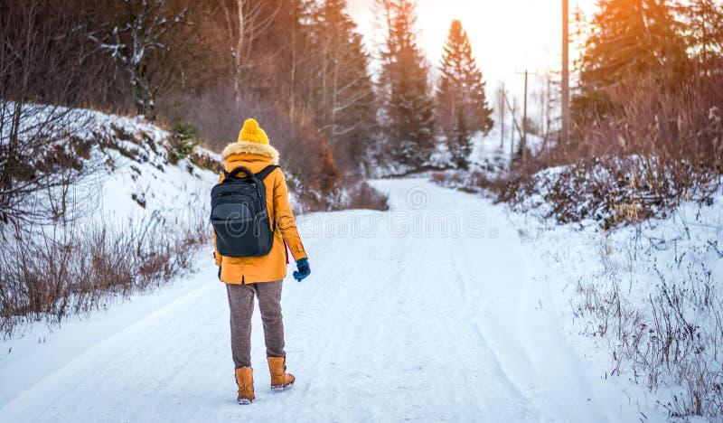 La ragazza va su una foresta dell'inverno al tramonto fotografia stock libera da diritti