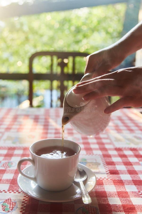 La ragazza versa il tè in una tazza Tazza di tè sulla tabella Una tazza di tè nero di recente fatto, vapore d'evasione, luce morb fotografia stock libera da diritti