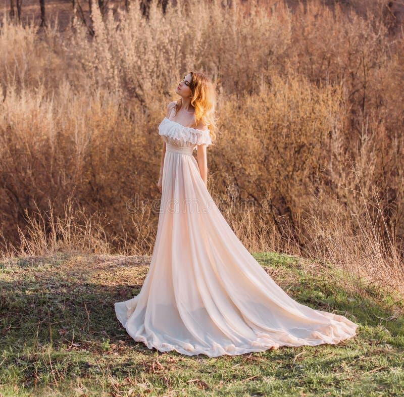 La ragazza in vestito trasparente fotografie stock