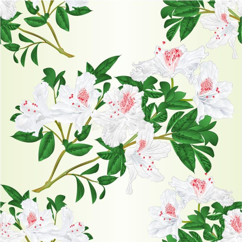 La ramita blanca del rododendro de la textura inconsútil con el vintage de las flores y de las hojas vector el ejemplo editable ilustración del vector