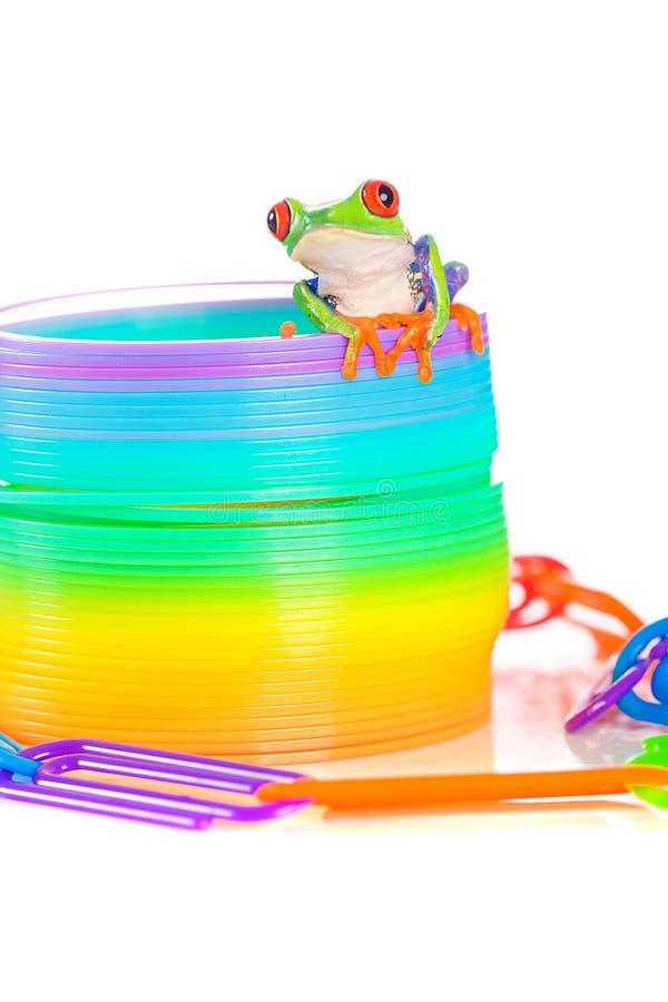La rana di albero Eyed rossa ha equilibrato su un giocattolo della sorgente immagini stock