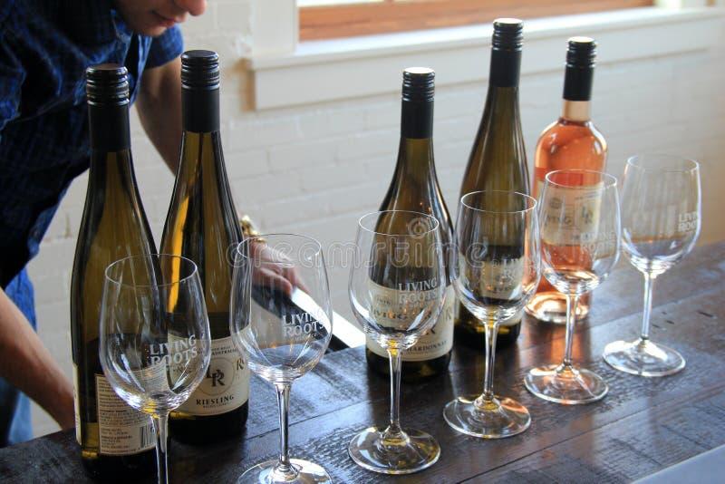 La rangée des bouteilles et des verres de vin, préparent pour goûter, établissement vinicole vivant de racine, Rochester, New Yor images libres de droits