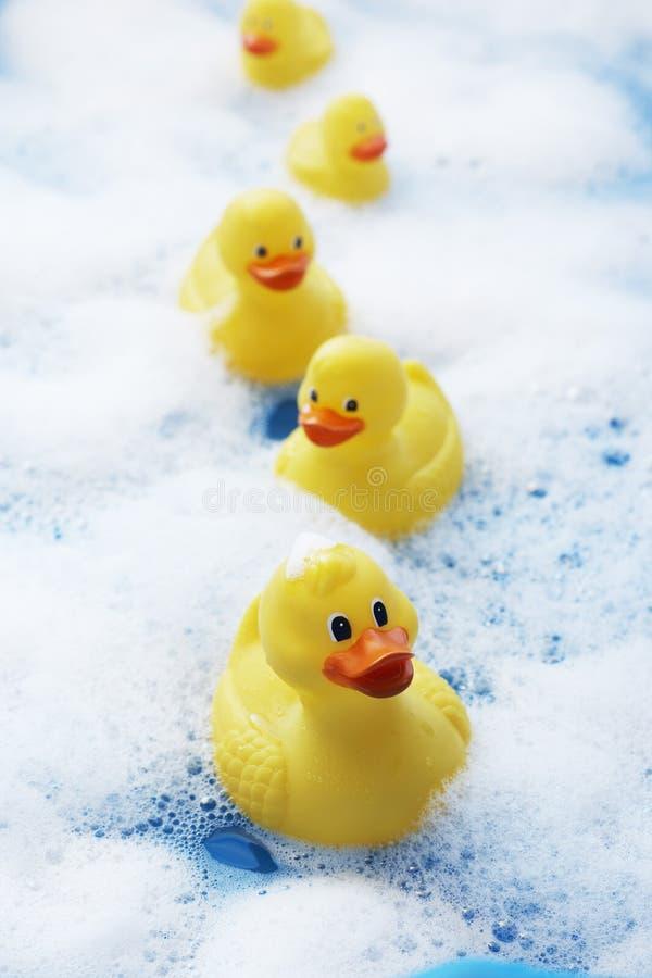 La rangée des canards en caoutchouc dans le bain moussant a élevé le plan rapproché de vue photographie stock libre de droits