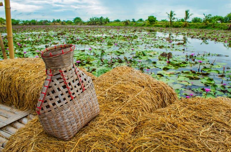 La rastrelliera di pesca, canestro di bambù ha messo il pesce sul balcone della paglia di riso fotografia stock libera da diritti