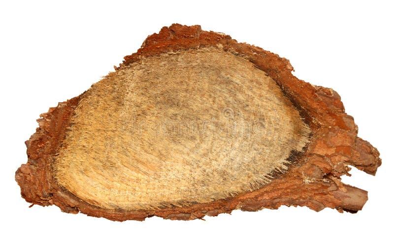 La rebanada de madera del registro cutted el tronco de árbol aislado en la visión blanca, superior fotografía de archivo libre de regalías