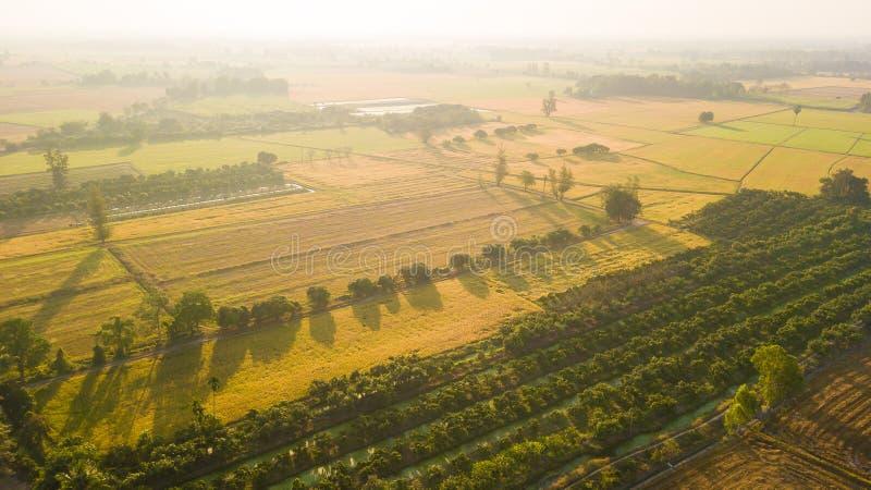 La recuperación de suelo del campo con objeto del sembrador o del plantin imágenes de archivo libres de regalías