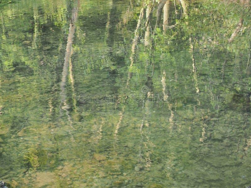 La reflexión de árboles le gusta la pintura de Monet imágenes de archivo libres de regalías