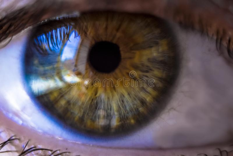 la reflexión grande en los ojos imágenes de archivo libres de regalías