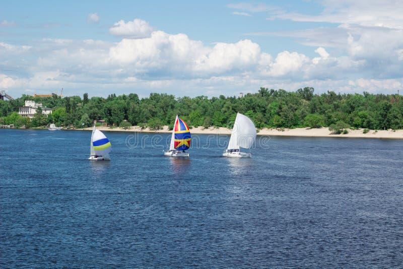 La regata sui crogioli di yacht della navigazione di fiume del lago con le vele bianche e i gennakers multicolori, ha riflesso il fotografia stock libera da diritti