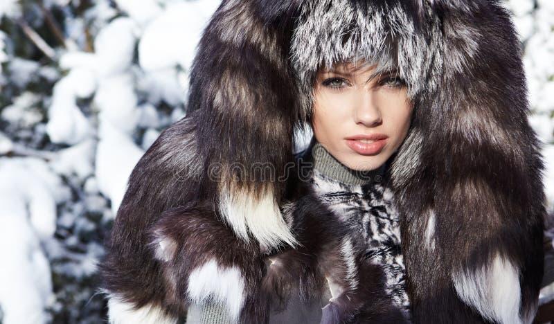La reina del invierno imágenes de archivo libres de regalías