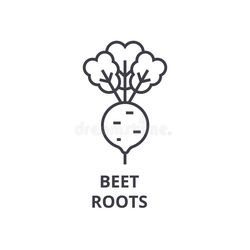 La remolacha, raíces alinea el icono, muestra del esquema, símbolo linear, vector, ejemplo plano stock de ilustración