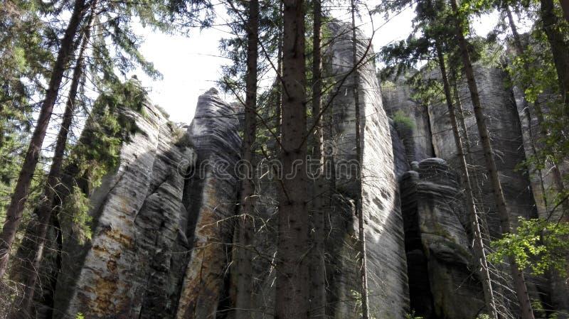 La repubblica Ceca, Adrszpach oscilla - Skalne Miasto nelle rocce di Adrszpach i fotografia stock libera da diritti