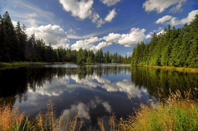 La reserva Kladska de la naturaleza imágenes de archivo libres de regalías