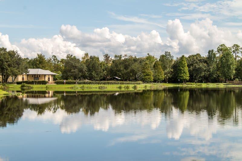 La riflessione del lago si appanna Florida immagine stock libera da diritti