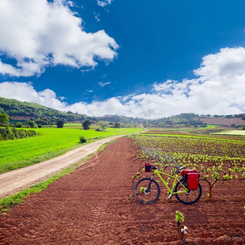 La Rioja vingårdfält i vägen av St James royaltyfria bilder