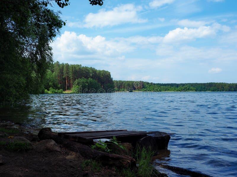 La riva del lago fotografia stock libera da diritti