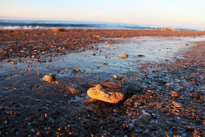 La riva del Mar Baltico immagini stock