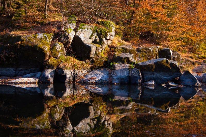 La rivière comme un miroir photographie stock libre de droits