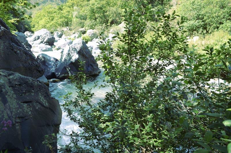 La rivière d'Alcantara et la végétation images stock