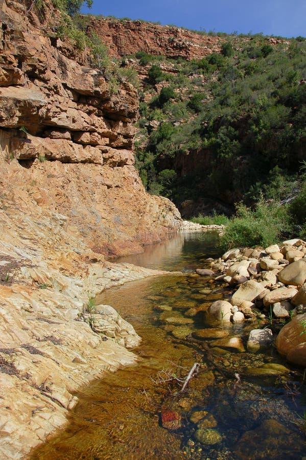 La rivière d'Opkoms dans la région de Kouga de l'Afrique du Sud photos libres de droits