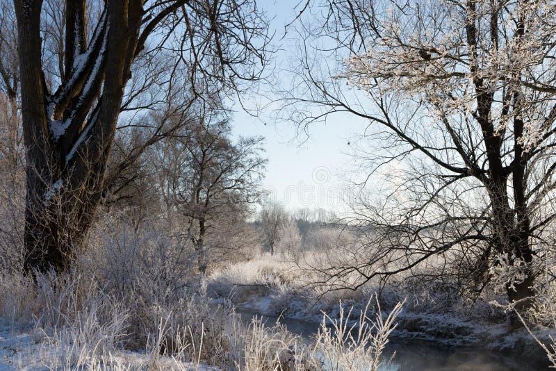 La rivière de Brenz en hiver images libres de droits