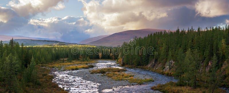 La rivière de forêt de montagne de saisons d'été d'automne opacifie la nature sauvage de long panorama de bannières de paysage photos stock