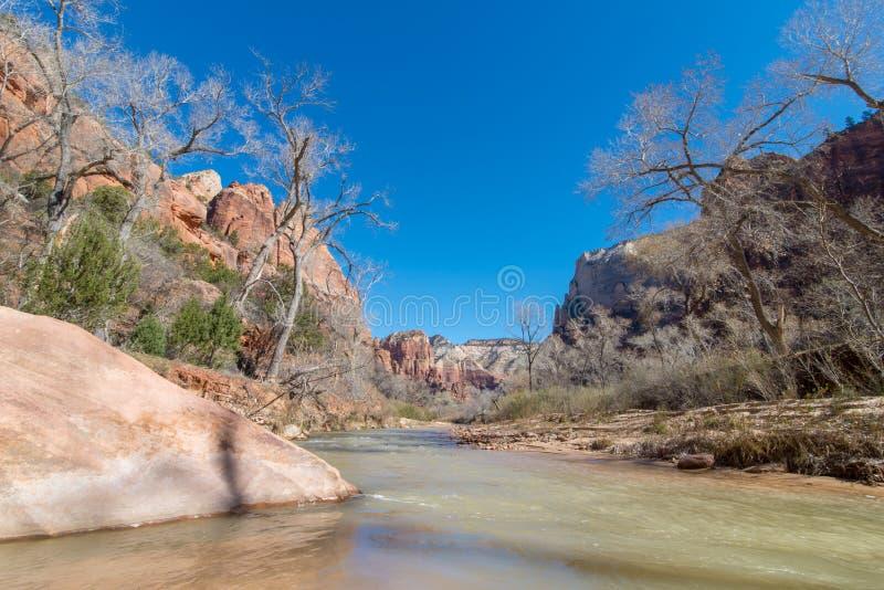 La rivière de Vierge, Zion National Park photo libre de droits