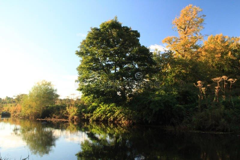 La rivière de Whitecart un matin d'hiver photos stock