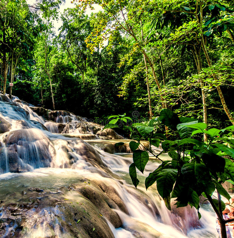 La rivière du ` s de Dunn tombe Jamaïque photographie stock libre de droits