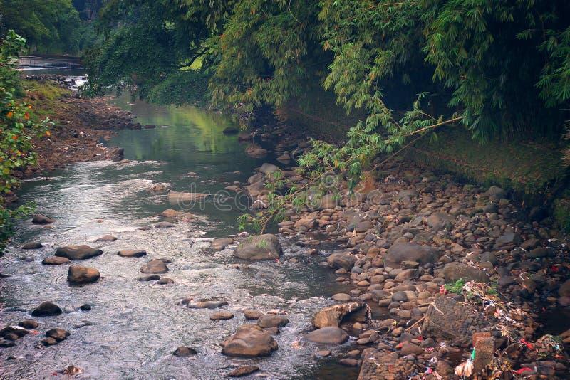 La rivière en parc images libres de droits