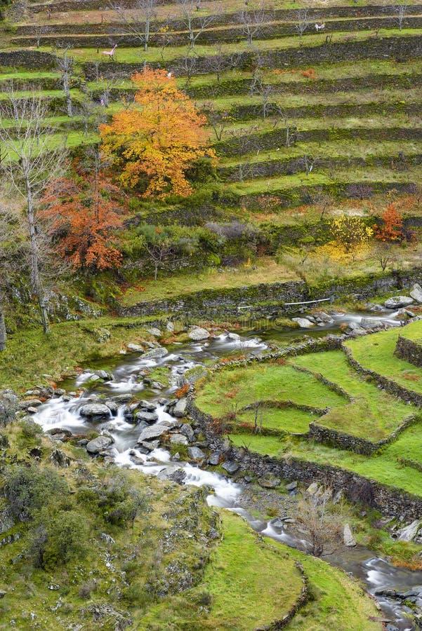 La rivière Malvellido qui traverse les vergers de la ville d'El Gasco à Las Hurdes en automne photographie stock