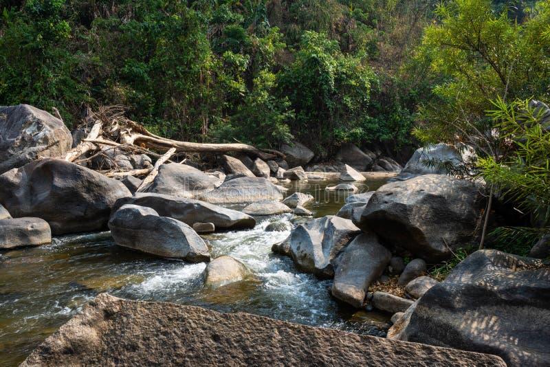 La rivière naturelle dans la forêt avec des roches aménagent la vue en parc image libre de droits