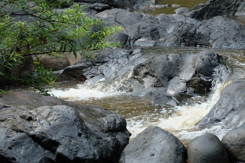 La rivière paisible image stock
