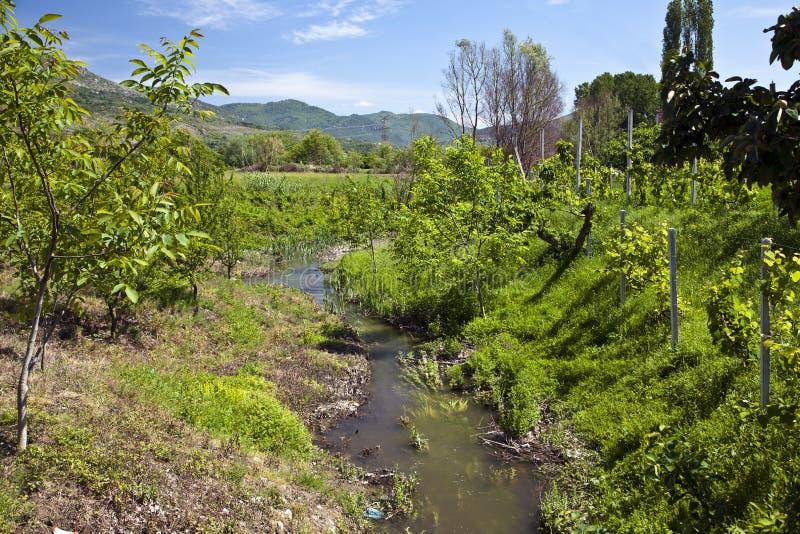 La rivière passe par le verger photos photo libre de droits