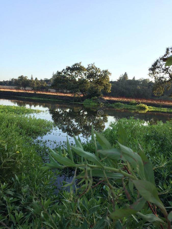 La rivière régulière image libre de droits