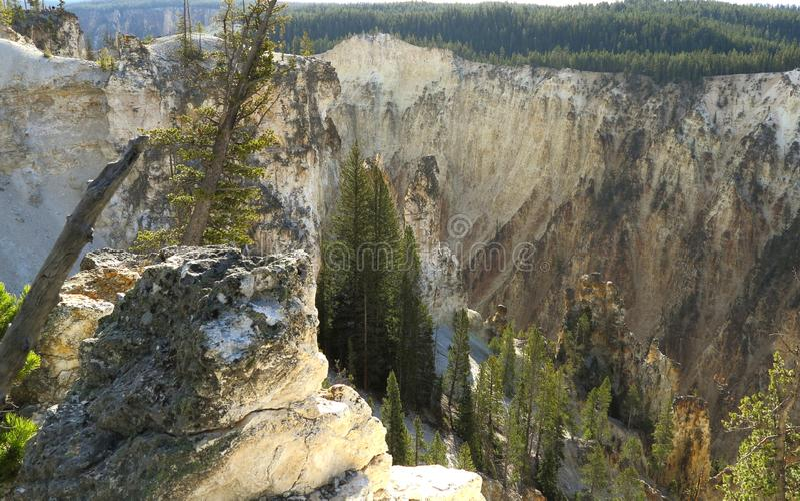 La rivière Yellowstone traverse le canyon grand de yellowstone photo stock