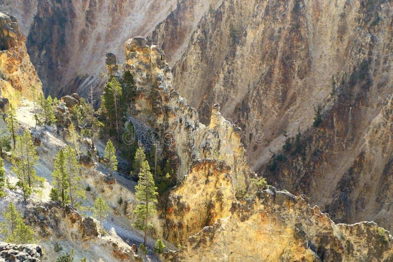 La rivière Yellowstone traverse le canyon grand de yellowstone images stock