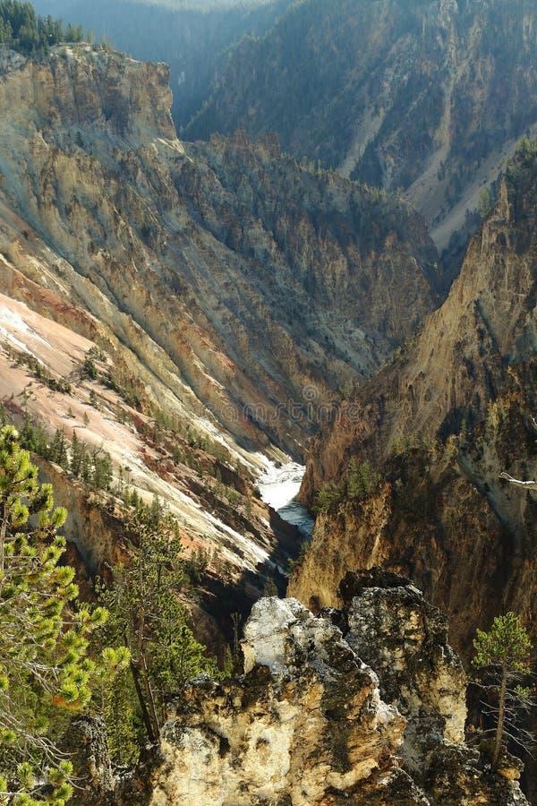 La rivière Yellowstone traverse le canyon grand de yellowstone image stock