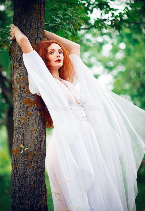 La robe blanche de port de belle femme de gingembre tient l'arbre proche photographie stock libre de droits