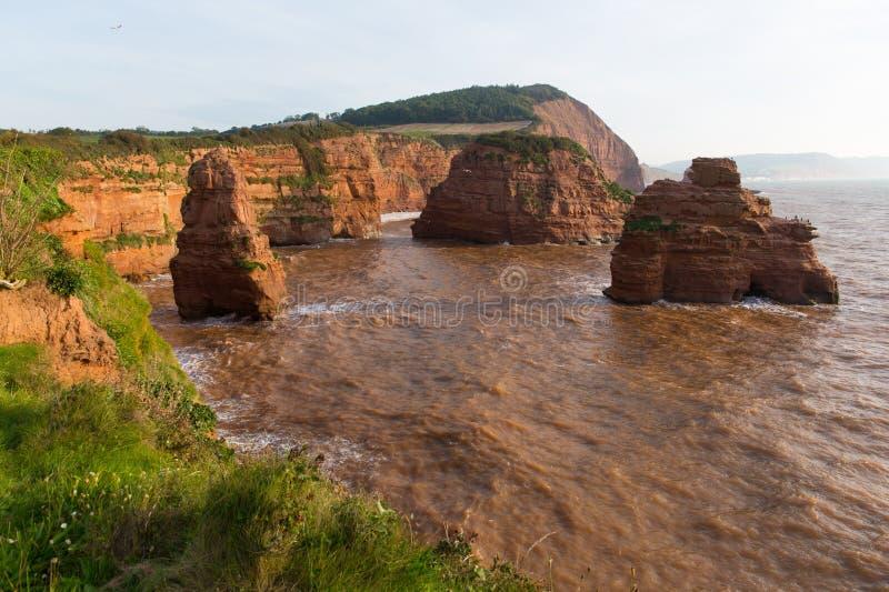 La roca jurásica británica de la piedra arenisca de la costa apila la bahía Devon England Reino Unido de Ladram foto de archivo