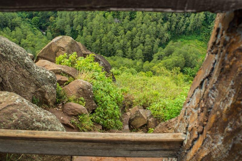 La roccia e la foresta verde dall'angolo alto fotografia stock libera da diritti
