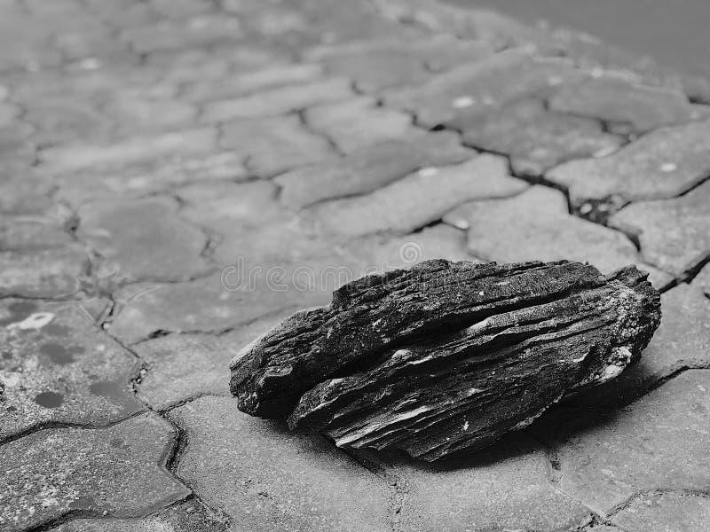 La roche ?seulement mais non isol?e ?n'a pas indiqu? photo libre de droits