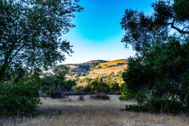 La Rolling Hills de Carmel Valley en California foto de archivo libre de regalías
