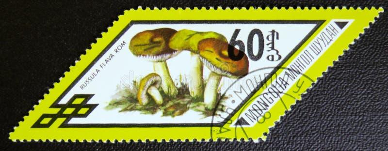 La ROM de Flama de Russula répand, série, vers 1978 photo stock