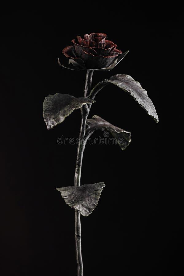 La rosa con un flor rojo en el fondo negro foto de archivo