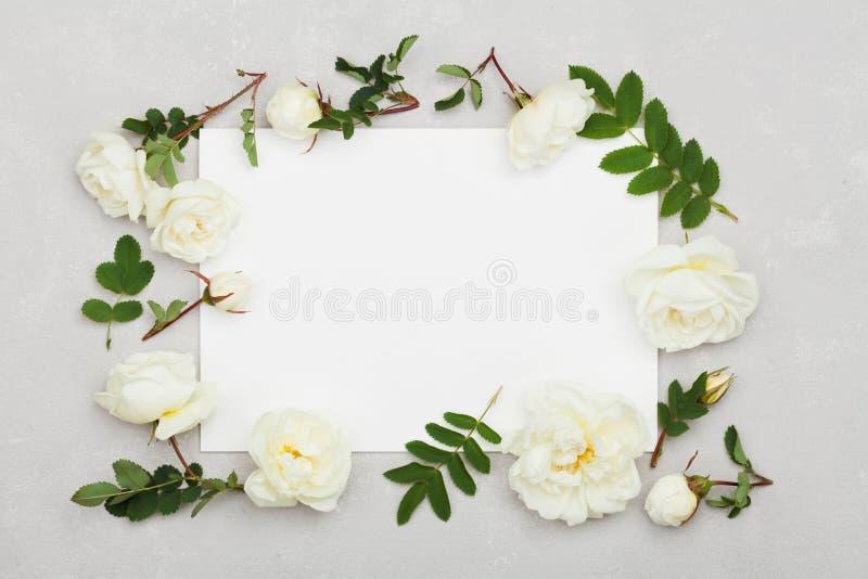 La rosa del blanco florece, verde se va y hoja de papel limpia en fondo gris claro desde arriba, estampado de flores hermoso, end fotografía de archivo libre de regalías